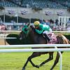 King Kreesa wins the 2015 Forbidden Apple Stakes.<br /> Coglianese Photos/Joe Labozzetta
