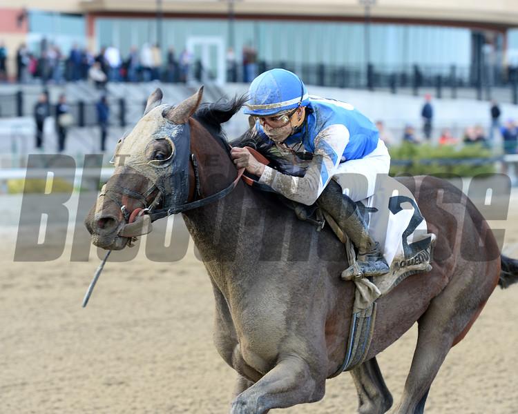 Effinex wins the ExcelsiorStakes 4/25/2015.<br /> Coglianese Photos/Joe Labozzetta