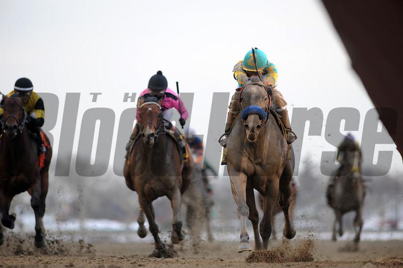El Kabeir wins the 2015 Gotham Stakes at Aqueduct. <br /> Coglianese Photos