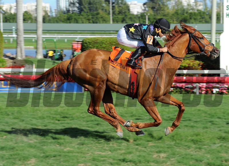 Manchurian High wins the 2015 Florida Sunshine Millions Turf Stakes at Gulfstream Park.<br /> Coglianese Photos/Leslie Martin