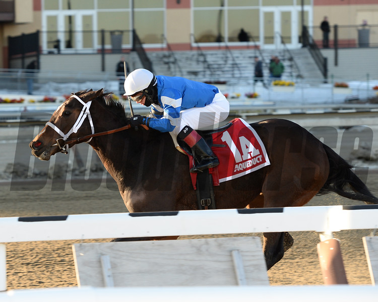 Divided Attention wins the 2015 Lady Handicap at Aqueduct.<br /> Coglianese Photos/Joe Labozzetta