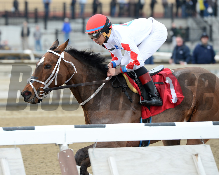 Before You Know It wins the 2015 Karakorum Elektra Stakes.<br /> Coglianese Photos/Joe Labozzetta