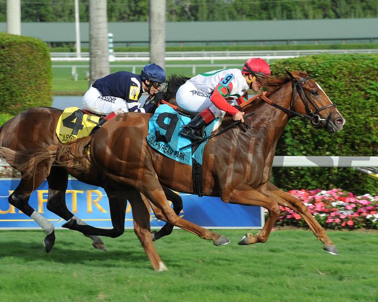 Night Prowler wins the 2015 Dania Beach Stakes at Gulfstream Park.<br /> Coglianese Photos/Leslie Martin