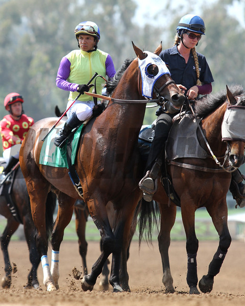 DESERT DYNAMO and Fernando Perez, prior to winning an Allowance race for three-year-olds at Santa Anita 05.30.15. Photo by Helen Solomon