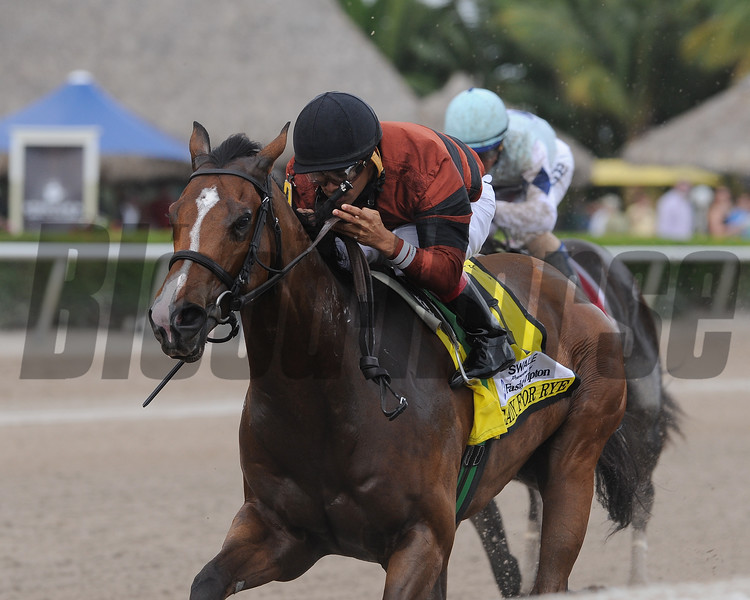 Ready for Rye wins the 2015 Swale Stakes.<br /> Coglianese Photos/Kenny Martin