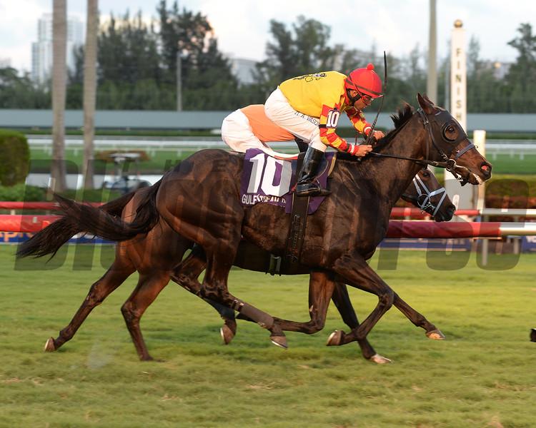 Reporting Star wins the 2015 El Prado Stakes.<br /> Coglianese Photos/Leslie Martin