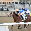 Overprepared wins the 2015 Busanda Stakes at Aqueduct. <br /> Coglianese Photos