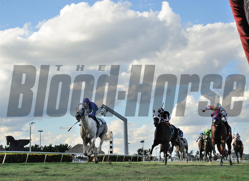 Do The Roar wins the Treasure Coast Stakes at Gulfstream Park.<br /> Coglianese Photo