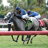 Loris Store comes home strong in the Soaring Softly Stakes at Gulfstream Park.<br /> Coglianese Photo