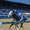 Liam's Map wins the 2015 Woodward Stakes.<br /> Coglianese Photos/Joe Labozzetta