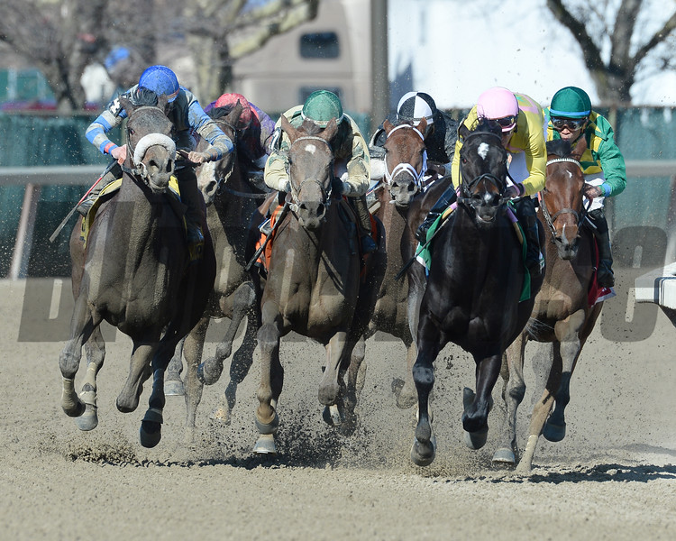 Condo Commando wins the 2015 Gazelle Stakes.<br /> Coglianese Photos/Joe Labozzetta