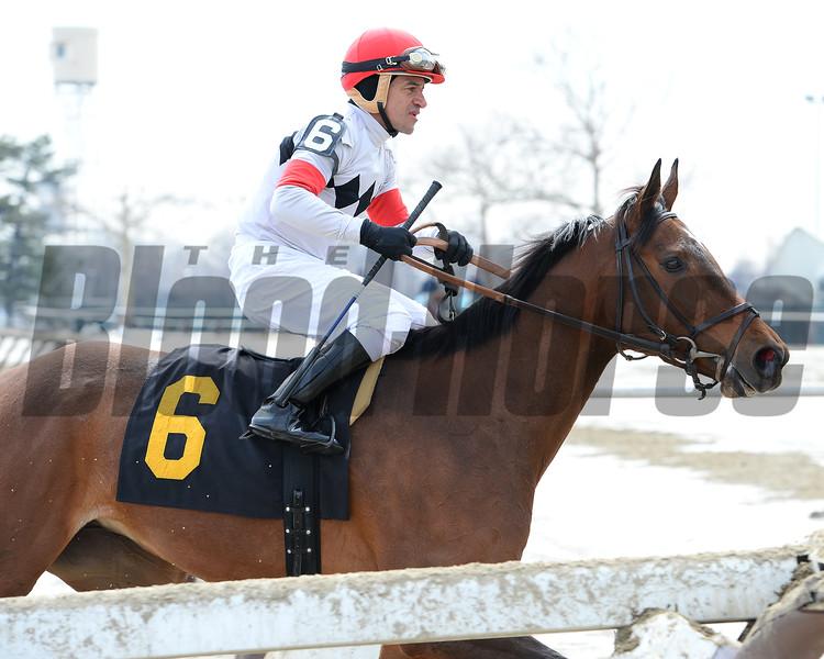 Room for Me wins the 2015 Videogenic Stakes.<br /> Coglianese Photos/Joe Labozzetta