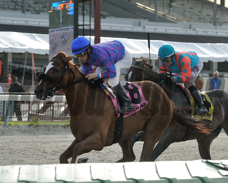 Full Salute wins the 2015 Buffalo Man Stakes.<br /> Coglianese Photos/Kenny Martin