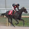 Devine Aida wins the 2015 Herecomesthebride Stakes.<br /> Coglianese Photos/Lauren King