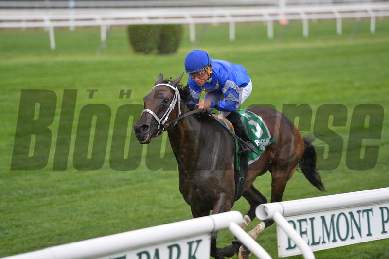 Sentiero Italia wins the 2015 Sands Point Stakes.<br /> Coglianese Photos/Joe Labozzetta