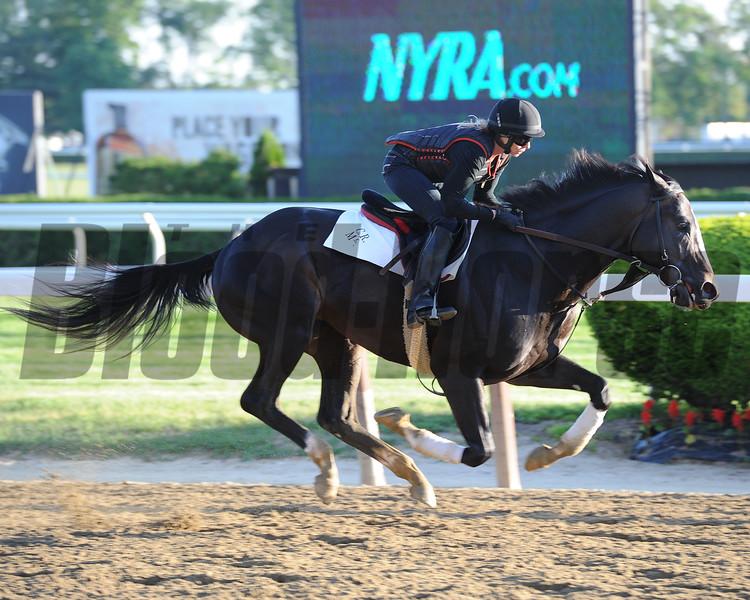 Honor Code - Belmont Park, May 22, 2015.<br /> Coglianese Photos/Susie Raisher