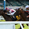 Divisidero wins the 2015 Pennine Ridge.<br /> Coglianese Photos/Joe Labozzetta