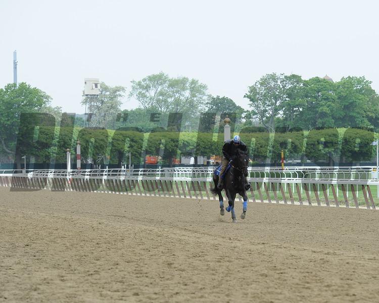 Cozmic One - Belmont Park, May 27, 2015<br /> Coglianese Photos/Susie Raisher