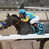 El Kabeir wins the 2015 Jerome Stakes at Aqueduct.<br /> Coglianese Photos/Joe Labozzetta