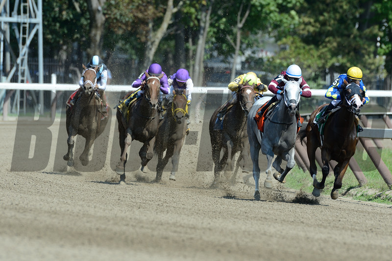 Just Wicked wins the 2015 Adirondack Stakes.<br /> Coglianese Photos/Joe Labozzetta