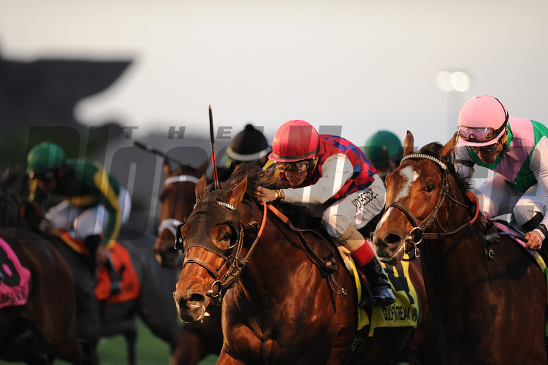 Dubai Sky wins the 2015 Kitten's Joy at Gulfstream Park.<br /> Coglianese Photos