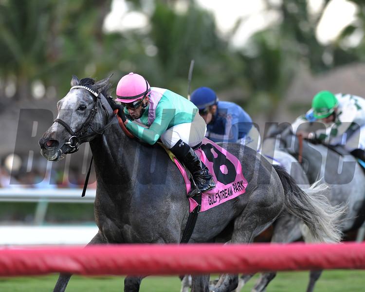 Tuttipaesi wins the 2015 South Beach Stakes.<br /> Coglianese Photos/Kenny Martin