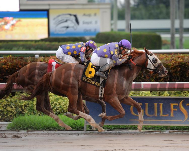 Twotwentyfive A wins the 2015 Florida Sire Prized Stakes.<br /> Coglianese Photos/Leslie Martin