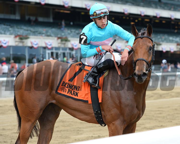 Lady Eli wins the Wonder Again Stakes at Belmont Park May 31, 2015.<br /> Coglianese Photos/Joe Labozzetta