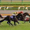 Maurice wins the Yasuda Kinen June 7 in Japan.<br /> Naoji Inada Photo