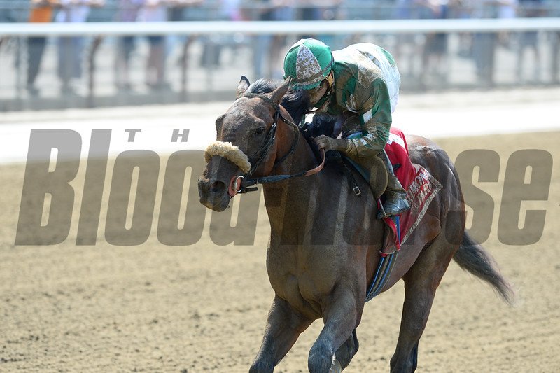 Manipulated wins the 2015 Rockville Centre Stakes.<br /> Coglianese Photos