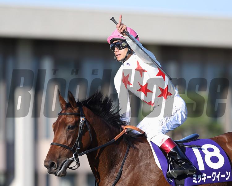 Mikki Queen wins the Shuka Sho Oct. 18, 2015.<br /> Masakazu Takahashi Photo