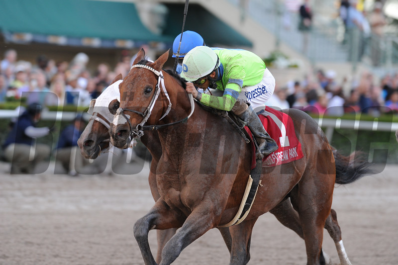 Sr. Quisqueyano wins the 2015 Florida Sunshine Millions Classic Stakes.<br /> Coglianese Photos/Kenny Martin