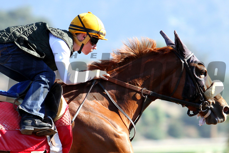 Jockey DRAYDEN VAN DYKE working horses at Santa Anita 09.26.15. Photo: Helen Solomon
