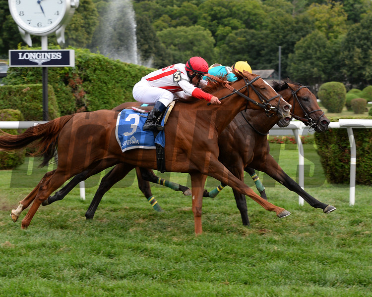Stormy Regatta wins the 2015 Riskaverse Stakes.<br /> Coglianese Photos/Lauren King