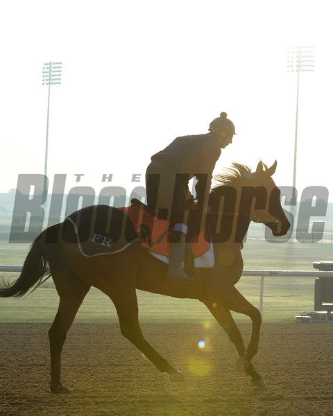 Dubai World Cup 2015