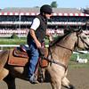 Jimmy Barnes Smokey the Pony