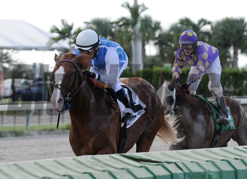 Rafting wins the 2015 Smooth Air Stakes.<br /> Coglianese Photos/Kenny Martin