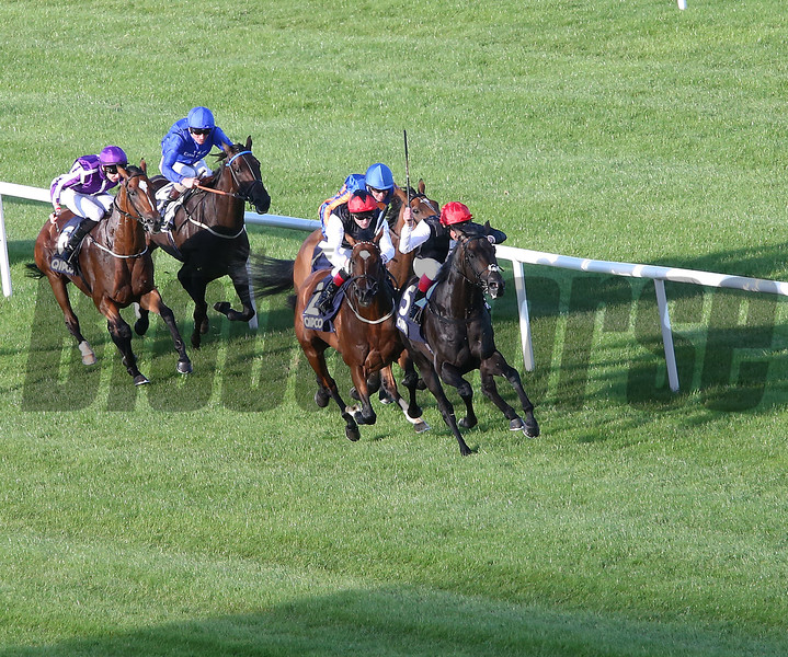 Golden Horn wins the 2015 QIPCO Irish Champion Stakes<br /> Caroline Norris Photo