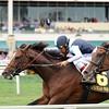 War Correspondent wins the 2015 Appleton Stakes.<br /> Coglianese Photos/Lauren King
