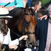 Lady Eli wins the 2015 Belmont Oaks.<br /> Coglianese Photos/Joe Labozzetta