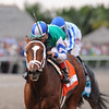 Materiality wins the 2015 Florida Derby.<br /> Coglianese Photos/Kenny Martin
