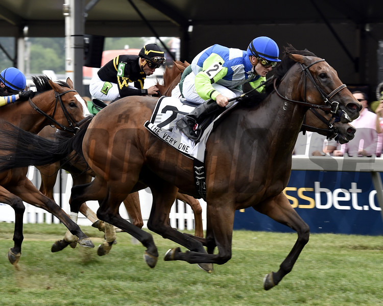 Ageless wins 2015 The Very One.<br /> Dave Harmon Photo