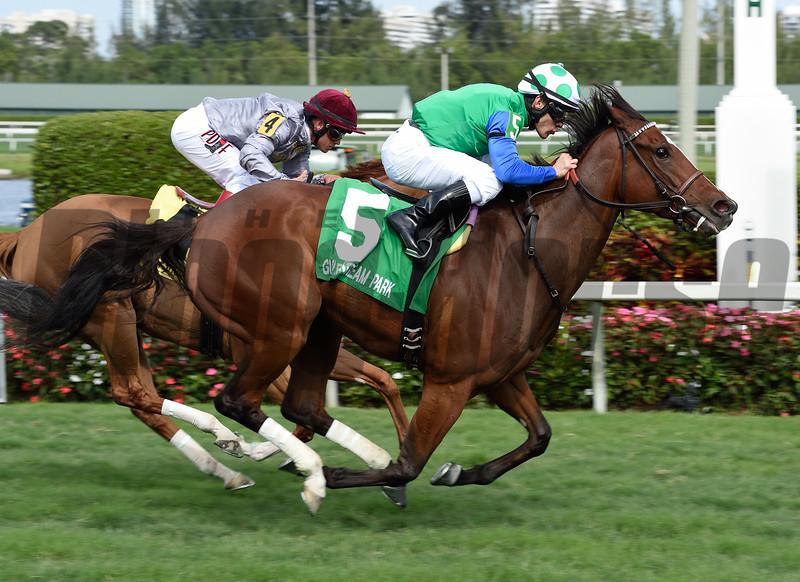 Lady Lara wins the 2015 Honey Fox Stakes.<br /> Coglianese Photos/Leslie Martin