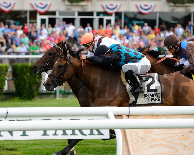 Daring Kathy wins the 2015 Perfect Sting Stakes.<br /> Coglianese Photos/Joe Labozzetta