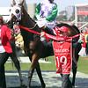Prince of Penzance (NZ) wins the 2015 Melbourne Cup with jockey Michelle Payne.<br /> Mark Gatt Photo