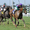 Rerun wins the Miami Mile.<br /> Coglianese Photos/Leslie Martin
