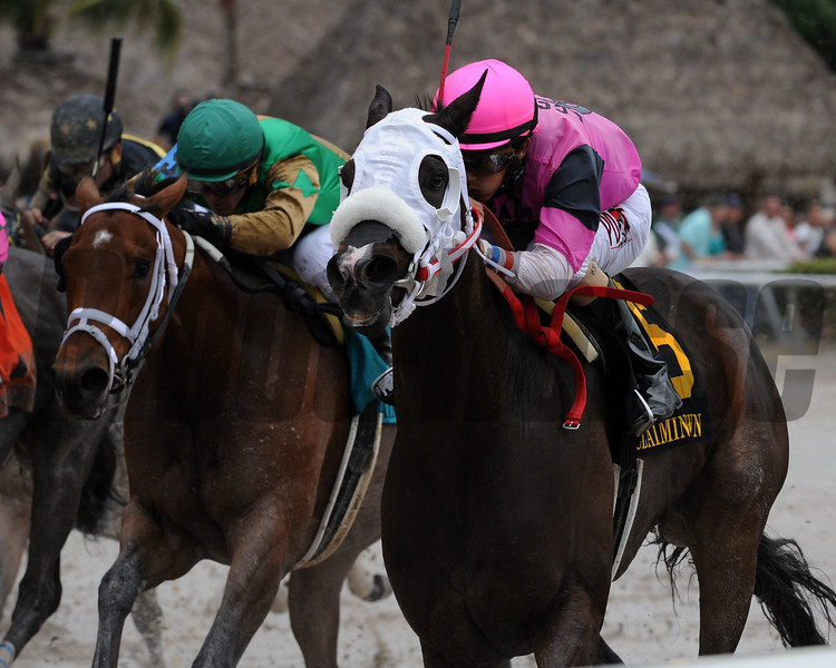 Silver Sashay wins the 2015 Claiming Crown Distaff Dash.<br /> Coglianese Photos/Kenny Martin