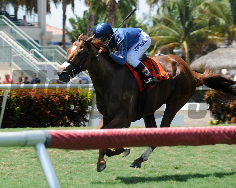 Golden Rifle wins the 2015 Eight Miles East Stakes.<br /> Coglianese Photos/Natalie Fawkes