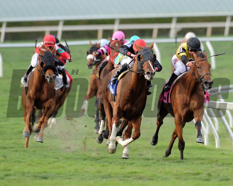 Imagining wins the 2015 Pan American Stakes.<br /> Coglianese Photos/Brian Caputo