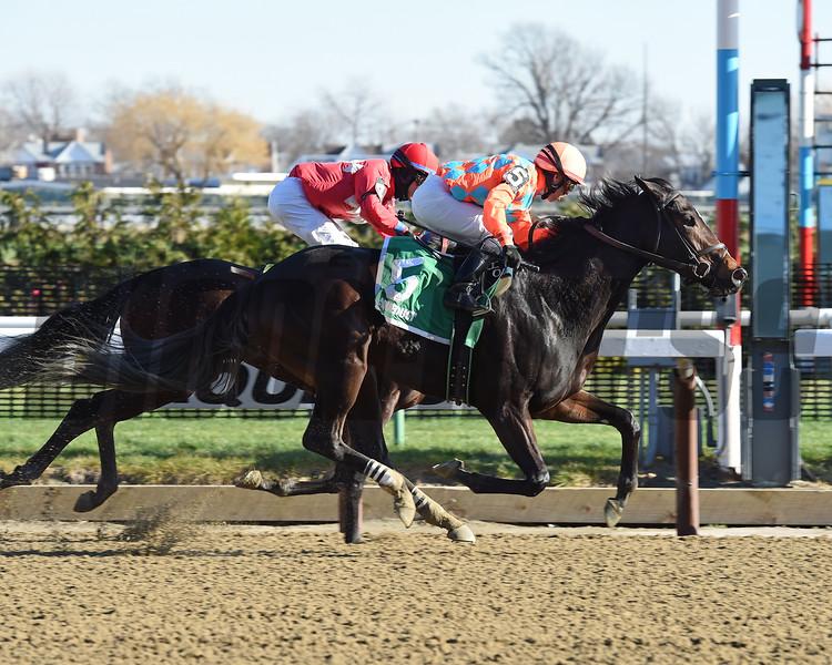 Fosty Margarita wins a New York Stallion Series race Dec. 20.<br /> Coglianese Photos/Chelsea Durand